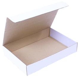 Selvlåsende kasse ES55 300x213x85mm