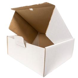 Selvlåsende kasse ES39 210x210x90mm