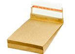 E-commerce bag paper 200x300+50mm